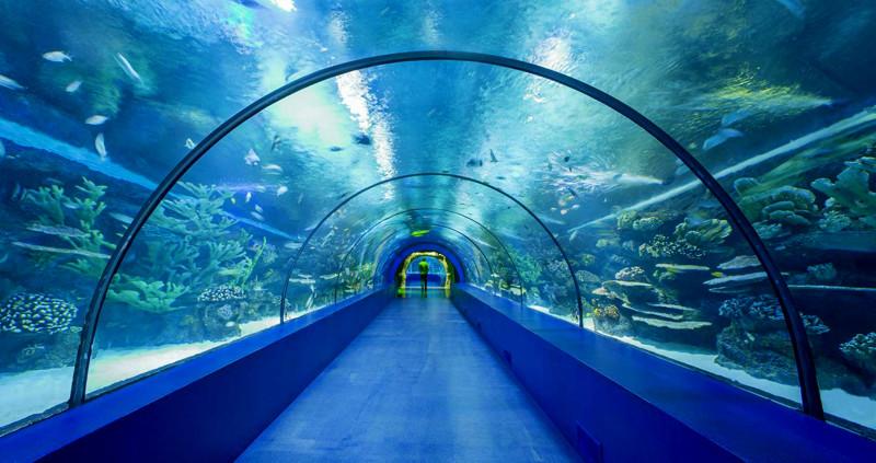 antalya aquarium Turkey Kids Family Holiday