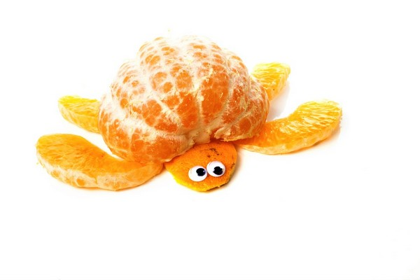 turtle made out of an orange
