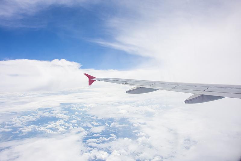 Wing of BA plane