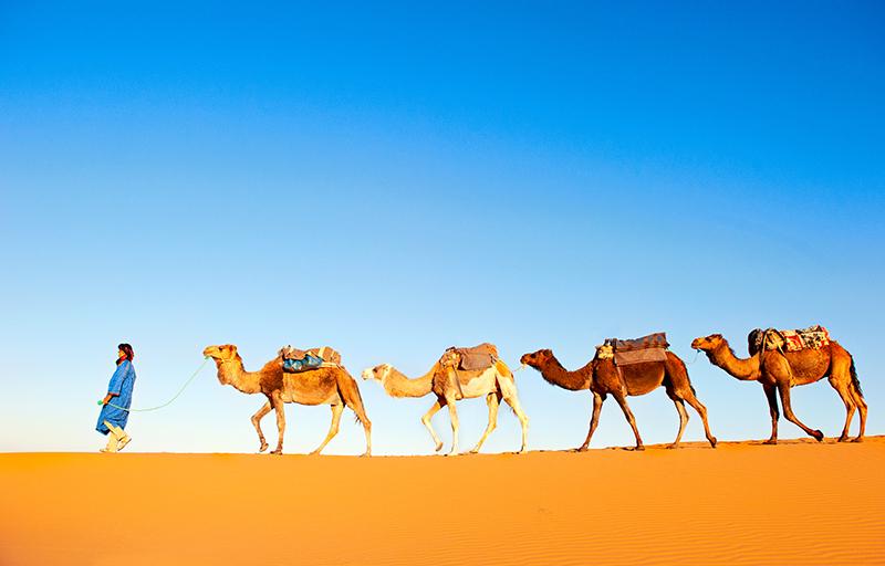 camel-riding-in-Marrakech