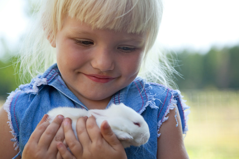 Little Girl with Rabbit Farmyard