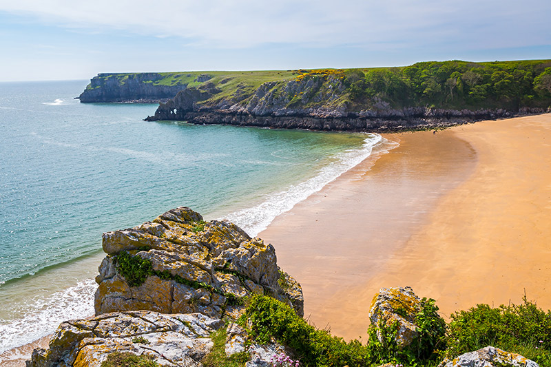 Overlooking the stunning beach at Barafundle Bay on the Pembrokeshire coast of South Wales UK Europe