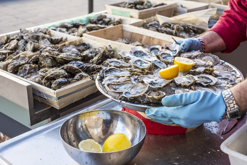Fresh Oysters Aquitaine France