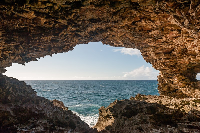 Animal Flower Cave Barbados