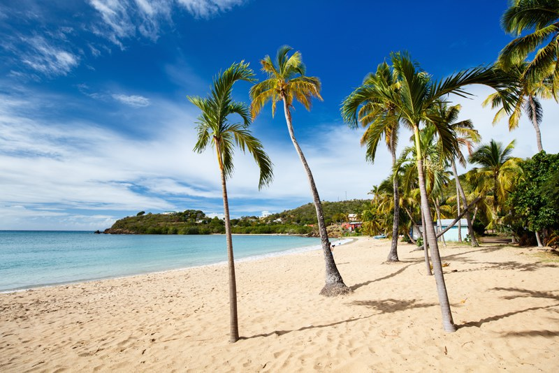 Idyllic tropical Carlisle bay beach with white sand, turquoise ocean water and blue sky, Antigua in Caribbean