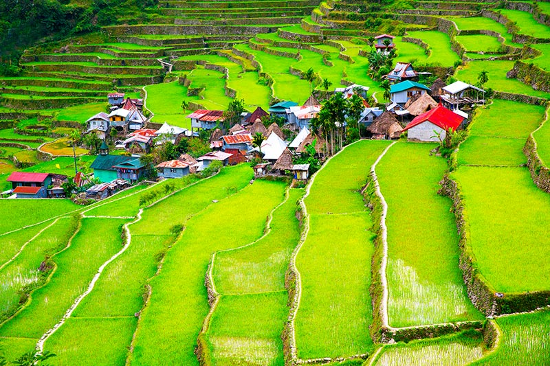 Banue rice terraces Philippines