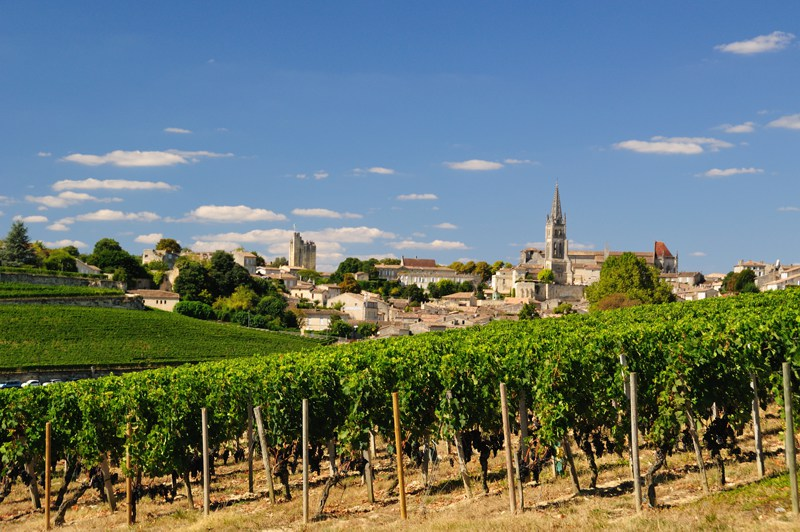 Saint-Emilion France Vineyards Wine