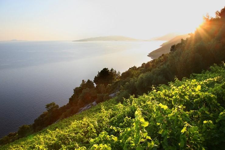 Pelješac peninsula, Croatia