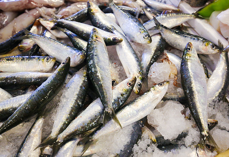 Portugal consumes the most fish and shellfish in Europe