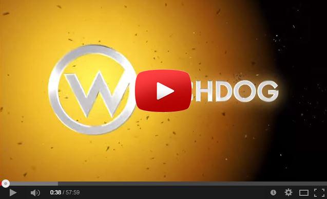 youtube watchdog newsletter
