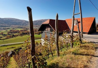 Cottage in Gornji Kot, Slovenia