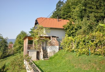 Cottage in Straža, Slovenia