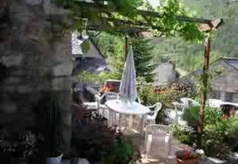 Gite in Nant, the South of France: Our terrace under the vine