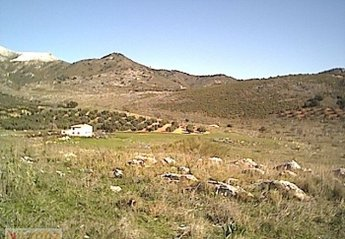 Country House in Rute, Spain