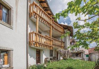 Villa in Italy, Ravascletto: