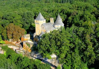 Chateau in Proissans, France