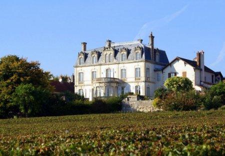 Chateau in Mercurey, France
