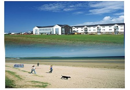 House in Clonard East, Ireland: Beachside