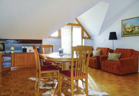 Apartment in Bogojina, Slovenia