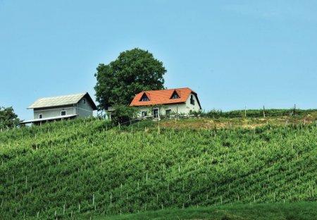 Villa in Vrh, Slovenia