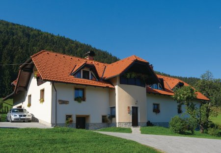 Apartment in Sele, Slovenia