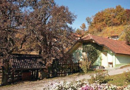Villa in Hrastno, Slovenia