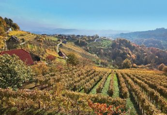 Villa in Paha, Slovenia