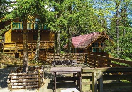 Apartment in Hočko Pohorje, Slovenia