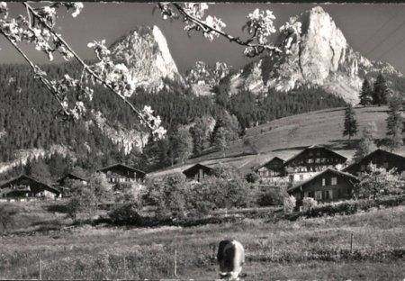 Chalet in Boltigen, Switzerland