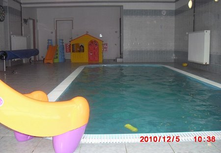 Villa in Central Bohemian Region, Czech Republic: INSIDE HEATED POOL,WATER GAMES AND MASSAGE,SLIDE,