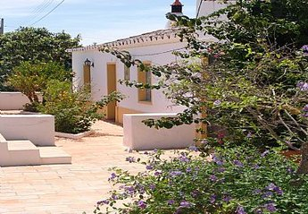Country House in Amaro Gonçalves, Algarve: main entrance