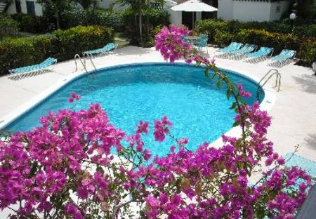 Apartment in Rockley, Barbados: Pool at Lemon Arbour