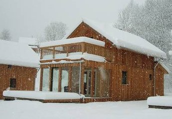 Chalet in Stadl, Austria: Cosy and warm inside with deep snow outside