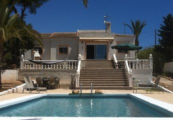 Villa in Mil Palmeras, Spain: View of villa from the pool