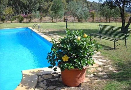 Villa in Pula, Sardinia: swimming pool and flowers