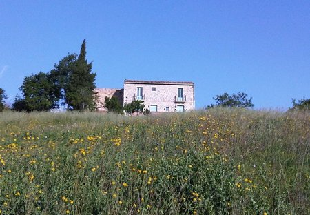 Farm House in Atessa, Italy: The Sanctuary in Abruzzo, Italy