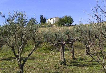 Farm House in Atessa, Italy